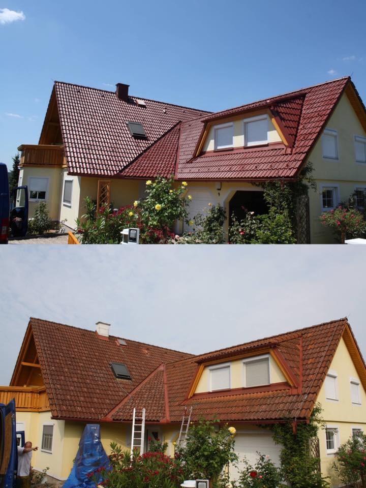 dach expert gmbh dachbeschichtung dachreinigung