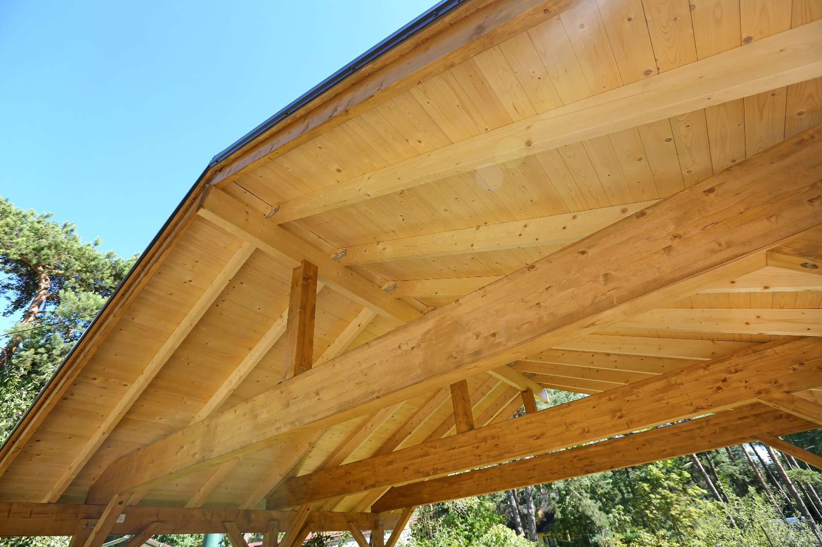 Carport aus Holz: welches Holz eignet sich für einen Carport?