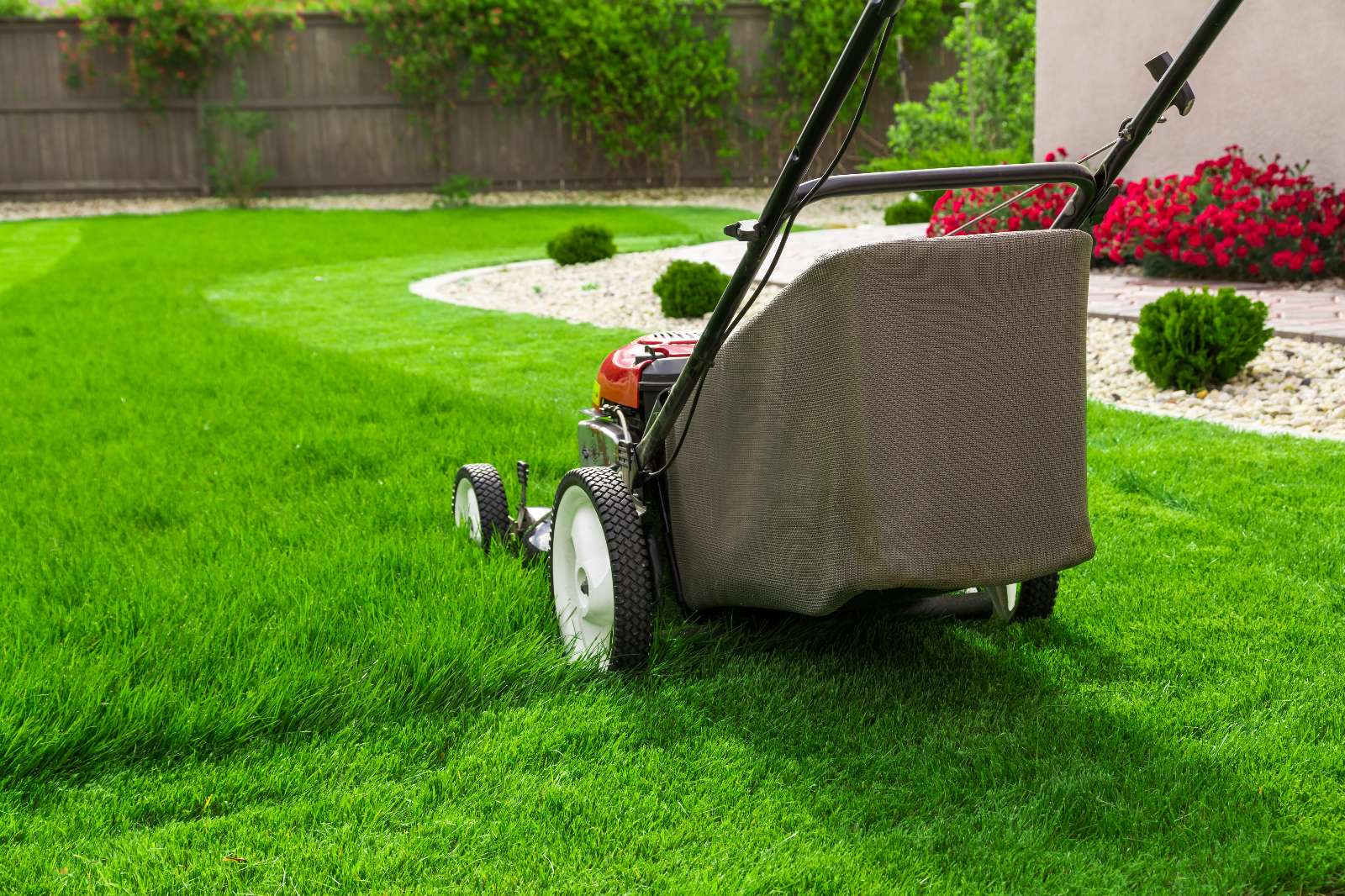 Rasenmähen, Gießen und Vertikutieren: Arbeitsablauf und Preise