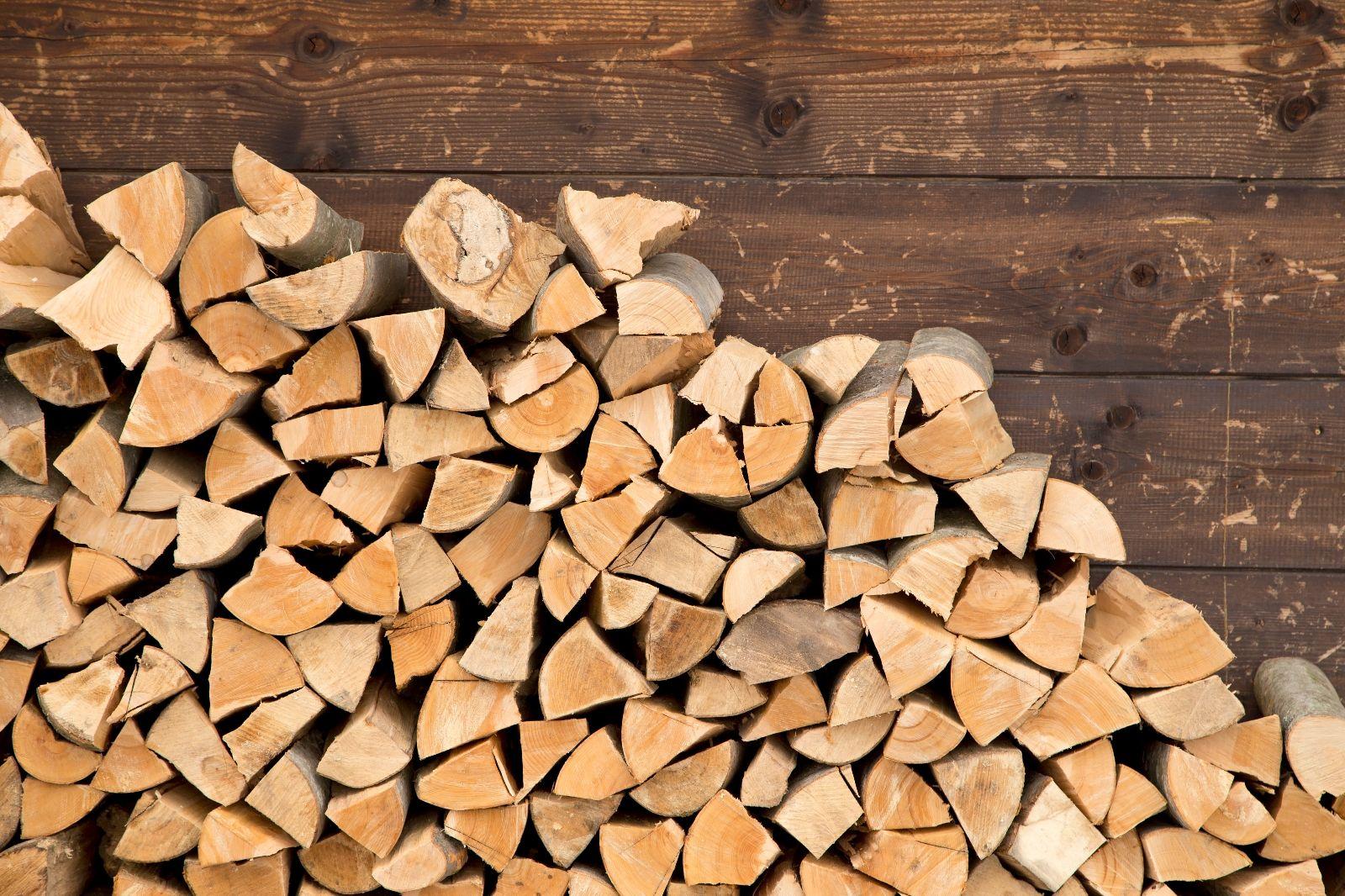 Brennholz: Buchenholz und sein Preis